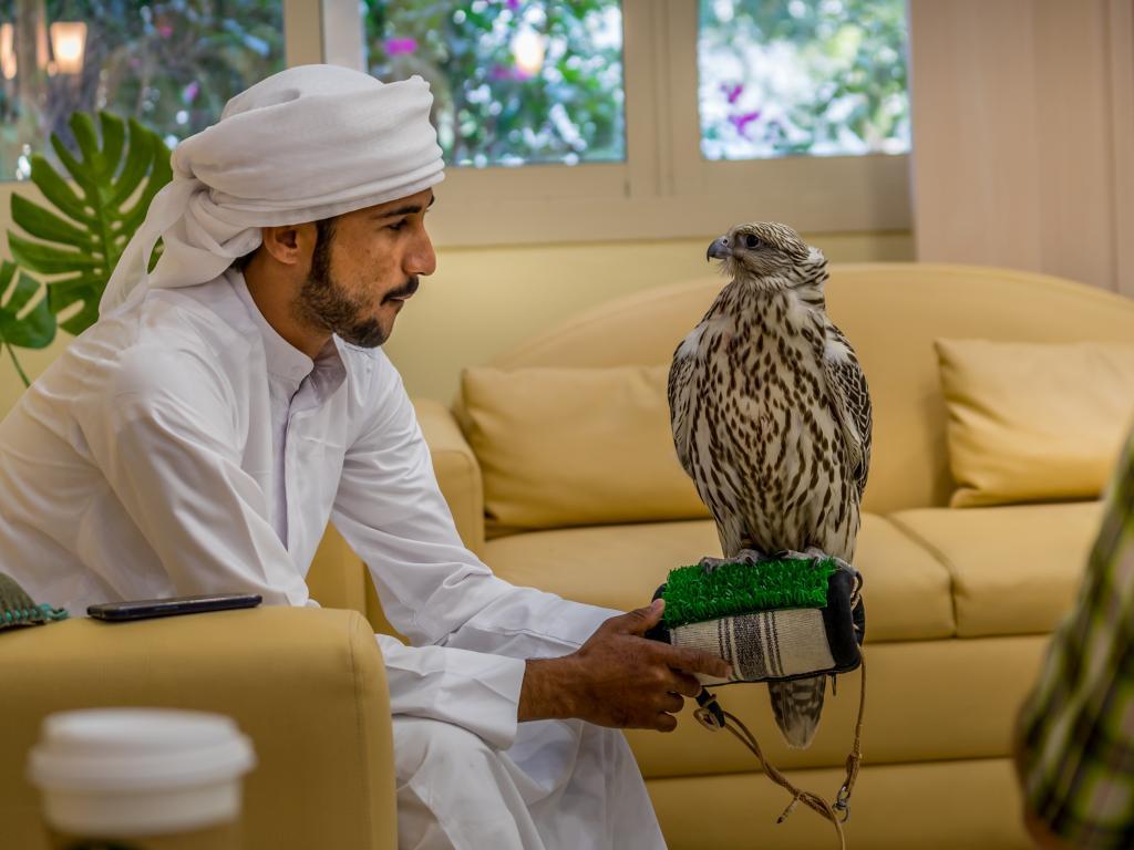 Das Wartezimmer für die Falken