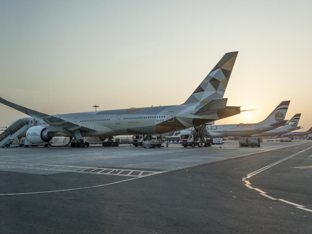 Etihad Flugzeuge am Flughafen Abu Dhabi