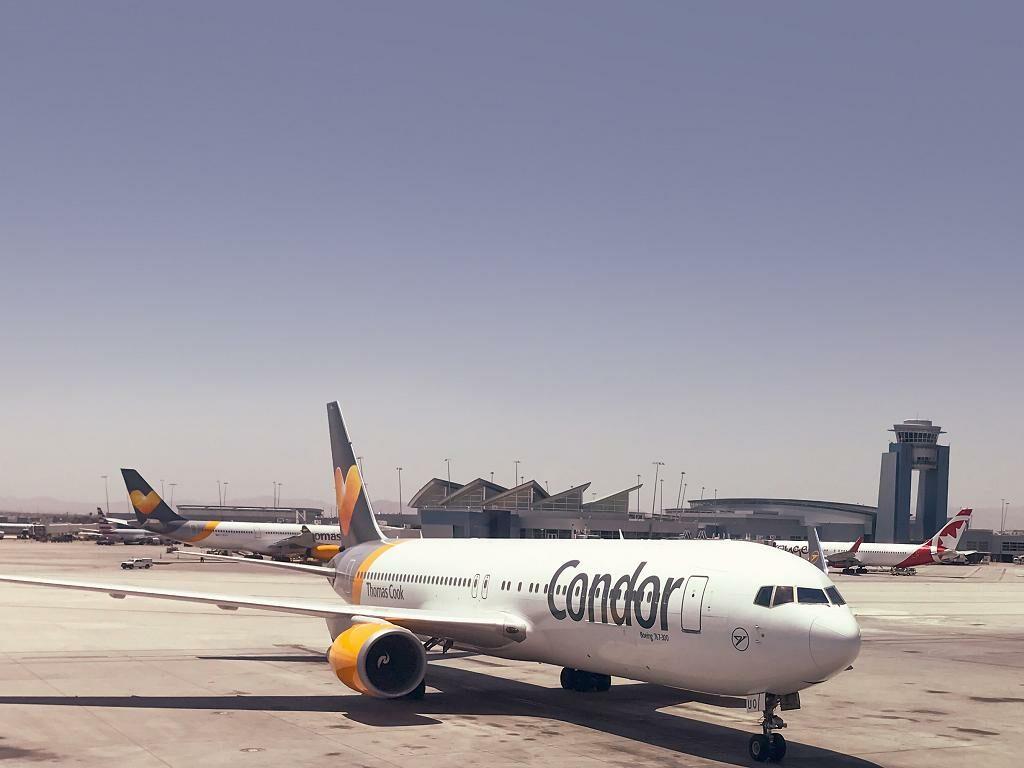 Condor Las Vegas